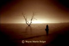 Wayne Belger -Solitude