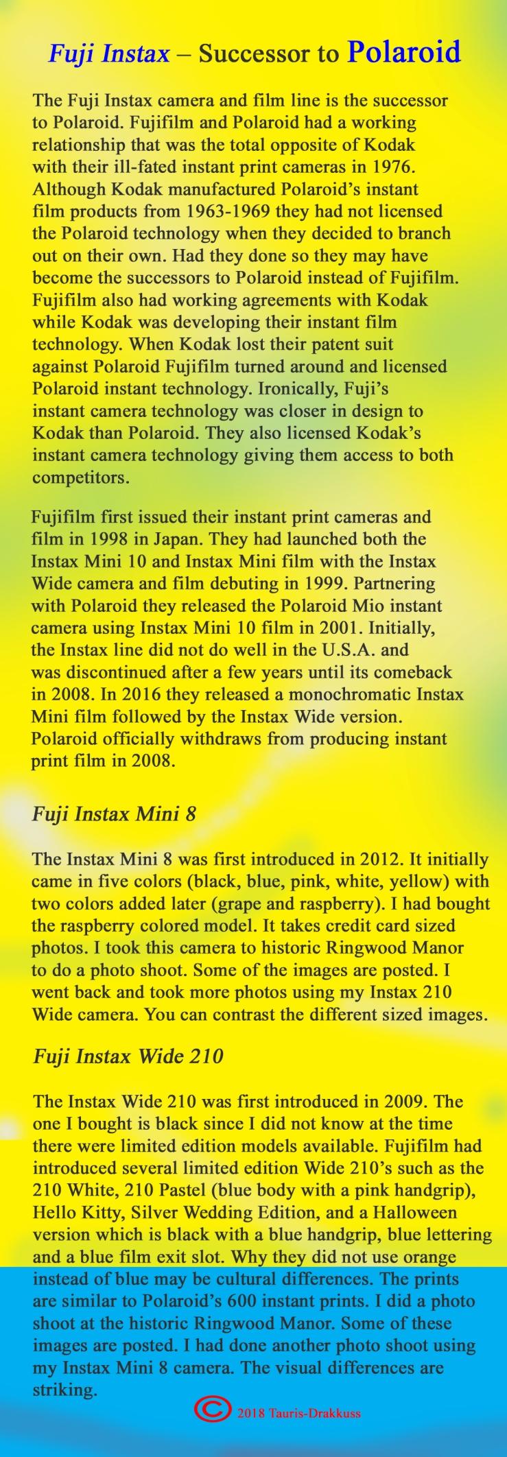 Fuji Instax Background - Final