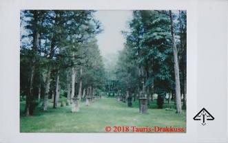 Ringwood Manor - M810 - Tauris-Drakkuss - c2018