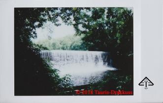 Ringwood Manor - M818 - Tauris-Drakkuss - c2018