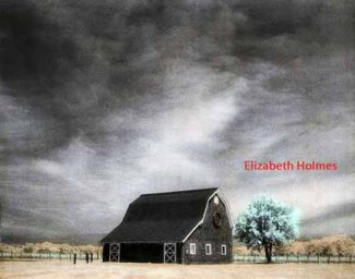 Handpainted-Vneyard-Barn-and-Tree - Elizabeth Holmes